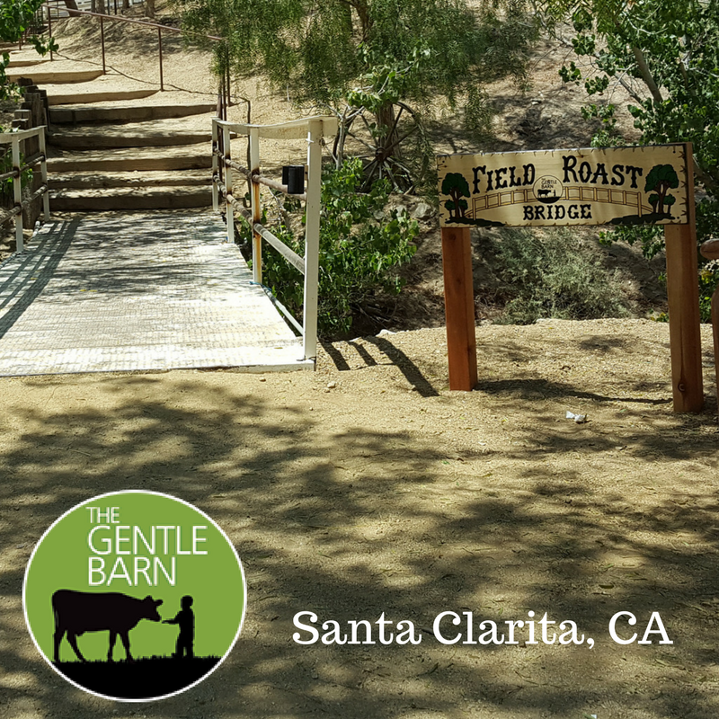Image for Our friends at The Gentle Barn