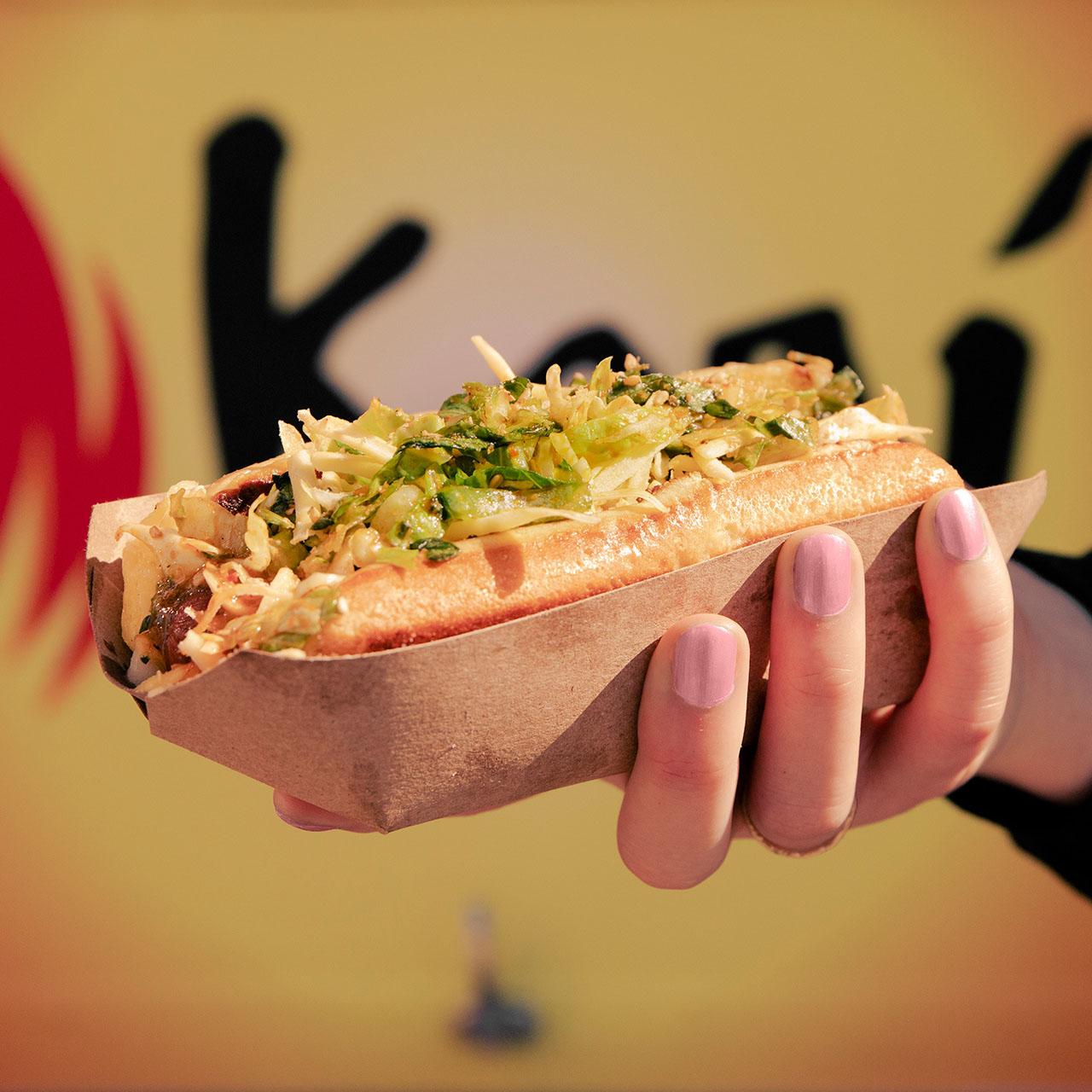 Kogi Home Run Dog